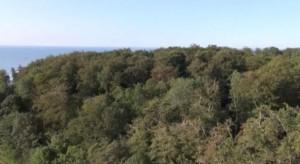 Ansicht-Kronen-300x164 in