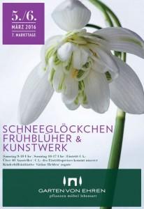 Schneegl 246 Ckchen-206x300 in